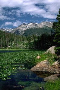 Cub Lake at Rocky Mountain National Park. Courtesy of RMNP.