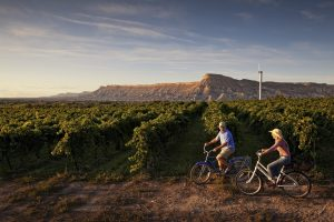 Colorado destinations like Grand Junction and Palisade offer unique options such as biking through wine country. Photo courtesy of Grand Junction Visitor & Convention Bureau.