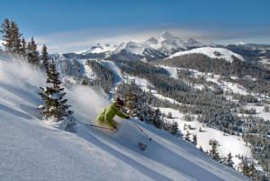 Skiing fresh powder in Telluride. Photo courtesy of Telluride Ski & Golf Resort.