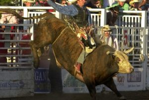 Steamboat Springs Pro Rodeo Series. Courtesy of Steamboat Grand.