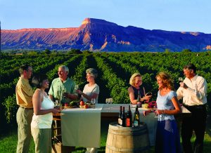 A group enjoying wine by the vines. Photo courtesy of Grand Junction VCB.