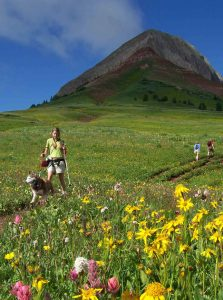 Hiking Colorado's Engineer Mountain near Durango and Silverton. Courtesy Snowmass Tourism and Ursus Adventures.