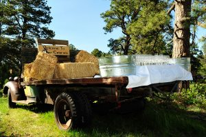 Serving beverages from a vintage truck. Photo by SSB Photo.
