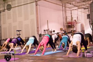 Brewhouse yoga offered by Bee Yoga at Sanitas Brewing Company. Courtesy of Bee Yoga.