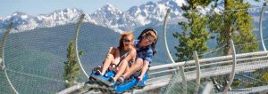 New alpine coaster at Vail's Epic Discovery. Courtesy Vail Valley Partnership.