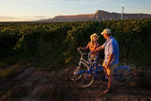 Biking between vineyards in Palisade and Grand Junction. Courtesy Grand Junction VCB.